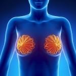 УЗИ молочных желез или маммография